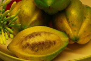 buah carica dieng